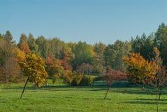 Πάρκο πόλεων το φθινόπωρο Στοκ φωτογραφία με δικαίωμα ελεύθερης χρήσης