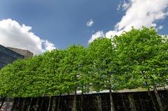πάρκο πόλεων Στοκ φωτογραφίες με δικαίωμα ελεύθερης χρήσης