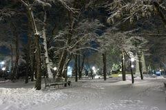 πάρκο πόλεων Στοκ Εικόνες