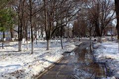 Πάρκο πόλεων στην άνοιξη Στοκ φωτογραφίες με δικαίωμα ελεύθερης χρήσης