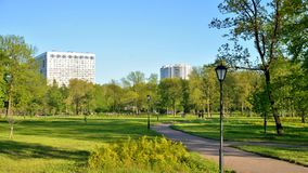 Πάρκο πόλεων στην ηλιόλουστη θερινή ημέρα απόθεμα βίντεο