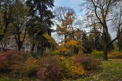 Πάρκο πόλεων το φθινόπωρο Χρυσό φθινόπωρο Στοκ εικόνα με δικαίωμα ελεύθερης χρήσης