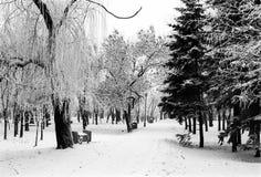 Πάρκο πόλεων το χειμώνα Στοκ φωτογραφία με δικαίωμα ελεύθερης χρήσης