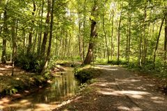 Πάρκο σε Brasschaat, Βέλγιο Στοκ Φωτογραφίες