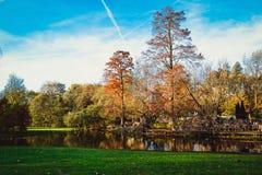 Πάρκο στο Άμστερνταμ Στοκ εικόνες με δικαίωμα ελεύθερης χρήσης