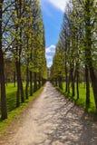 Πάρκο στο μουσείο-κτήμα Arkhangelskoye - Μόσχα Ρωσία Στοκ φωτογραφίες με δικαίωμα ελεύθερης χρήσης