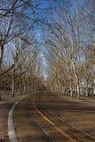 Πάρκο στο Μπορντώ, Aquitaine στοκ εικόνες
