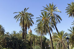 Πάρκο στο Παλέρμο στοκ φωτογραφία
