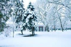 Πάρκο στο χιόνι Στοκ φωτογραφίες με δικαίωμα ελεύθερης χρήσης