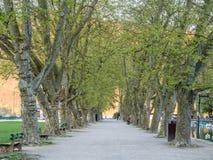 Πάρκο στο Annecy, Γαλλία Στοκ φωτογραφία με δικαίωμα ελεύθερης χρήσης