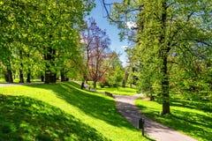 Πάρκο την άνοιξη με τον πράσινο χορτοτάπητα, φως ήλιων Πέτρινη διάβαση μέσα Στοκ Εικόνα