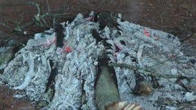 Πάρκο της Γεωργίας, κράτος αμερικανών ιθαγενών Etowah, ζουμ Α μέσα στις καίγοντας χοβόλεις μέσα στην καλύβα φιλμ μικρού μήκους