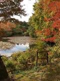 Πάρκο της Ιαπωνίας στοκ φωτογραφία