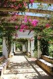 Πάρκο της Μαρίας Luisa, Σεβίλη, Ανδαλουσία Στοκ φωτογραφίες με δικαίωμα ελεύθερης χρήσης