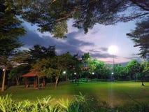 Πάρκο της Μπανγκόκ του ηλιοβασιλέματος στοκ εικόνα