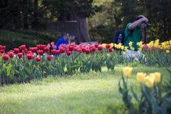 Πάρκο της Elizabeth - ουρανός για τους φωτογράφους στοκ εικόνες