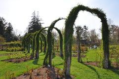 Πάρκο της Elizabeth στο Κοννέκτικατ Στοκ εικόνες με δικαίωμα ελεύθερης χρήσης