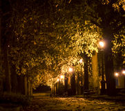 Πάρκο τη νύχτα Σιένα Στοκ Εικόνες