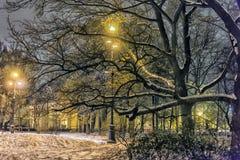 Πάρκο τη νύχτα το χειμώνα με το χιόνι στοκ εικόνα με δικαίωμα ελεύθερης χρήσης