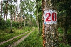 Πάρκο τοπίων κοντά σε Cedynia Στοκ φωτογραφίες με δικαίωμα ελεύθερης χρήσης