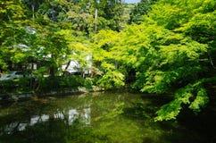 Πάρκο του Κιότο Στοκ φωτογραφία με δικαίωμα ελεύθερης χρήσης