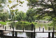 πάρκο του Λονδίνου Στοκ Φωτογραφίες
