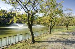 Πάρκο του Νάγκουα - Meijo, Ιαπωνία στοκ φωτογραφία με δικαίωμα ελεύθερης χρήσης