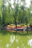 Πάρκο του Πεκίνου ZhongShan Στοκ φωτογραφία με δικαίωμα ελεύθερης χρήσης