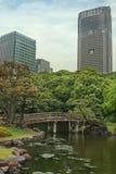 Πάρκο του Τόκιο Στοκ εικόνα με δικαίωμα ελεύθερης χρήσης