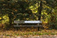 Πάρκο το φθινόπωρο Στοκ Εικόνες
