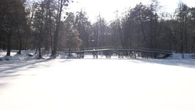 Πάρκο το χειμώνα, ηλιόλουστη ημέρα απόθεμα βίντεο