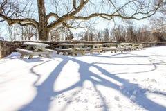 Πάρκο το χειμώνα Στοκ Φωτογραφία