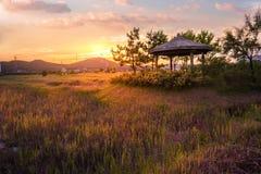 Πάρκο υγρότοπου οικολογίας Sorae, όμορφο ηλιοβασίλεμα και παραδοσιακοί ανεμόμυλοι, incheon Νότια Κορέα στοκ φωτογραφίες