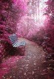 Πάρκο φαντασίας Στοκ Φωτογραφίες