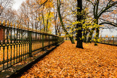 Πάρκο φθινοπώρου κοντά στο σπίτι του Μέγας Πέτρου στη Αγία Πετρούπολη Στοκ φωτογραφία με δικαίωμα ελεύθερης χρήσης
