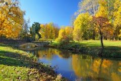 Πάρκο φθινοπώρου με τα ζωηρόχρωμα δέντρα Στοκ Εικόνες