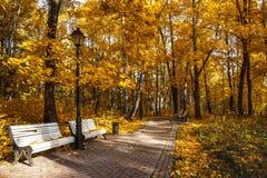 Πάρκο φθινοπώρου στην μουσείο-επιφύλαξη Tsaritsyno, Μόσχα στοκ εικόνα