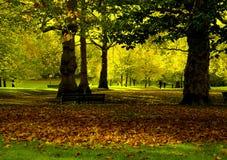 πάρκο φθινοπώρου Στοκ Εικόνες