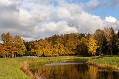 Πάρκο φθινοπώρου Pavlovsk, Ρωσία Στοκ Εικόνες