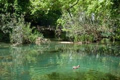 Πάρκο φύσης καταρρακτών Kursunlu, Antalya (Τουρκία) Στοκ φωτογραφία με δικαίωμα ελεύθερης χρήσης