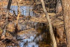 Πάρκο φύσης του Martin το φθινόπωρο Στοκ φωτογραφία με δικαίωμα ελεύθερης χρήσης
