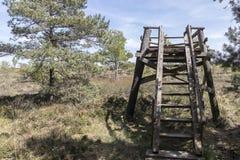 Πάρκο φύσης Στοκ Φωτογραφίες