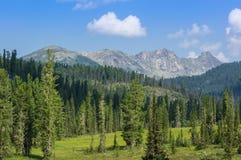 Πάρκο φύσης Ergaki στοκ φωτογραφίες με δικαίωμα ελεύθερης χρήσης