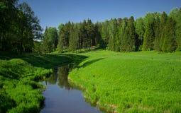 Πάρκο, φύση Στοκ εικόνα με δικαίωμα ελεύθερης χρήσης