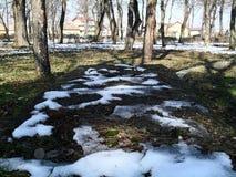 Πάρκο χειμερινών τοπίων Στοκ φωτογραφία με δικαίωμα ελεύθερης χρήσης