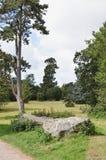 Πάρκο χορτοταπήτων Swindon στοκ εικόνες