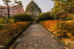 Πάρκο όπως τη ρύθμιση με μια διάβαση πεζών τούβλου Στοκ εικόνα με δικαίωμα ελεύθερης χρήσης
