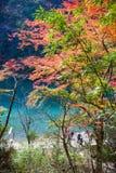 Πάρκο Arashiyama στην εποχή φθινοπώρου Στοκ Εικόνες