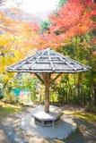 Πάρκο Arashiyama στην εποχή φθινοπώρου Στοκ φωτογραφία με δικαίωμα ελεύθερης χρήσης