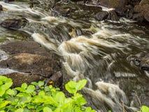 Πάρκο Aros Στοκ εικόνες με δικαίωμα ελεύθερης χρήσης